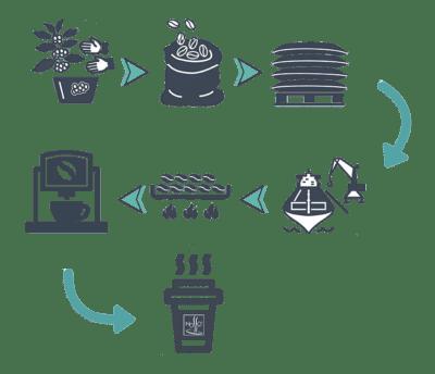 cafe sostenible proceso